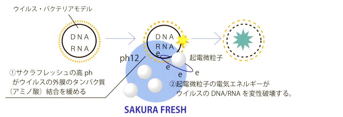 除菌のイメージ図